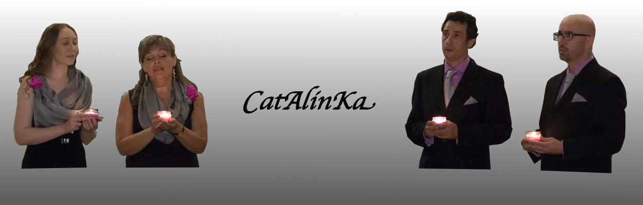 CatAlinKa Project